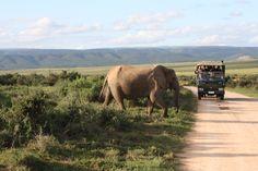 Afrique du Sud © Voyages Gendron