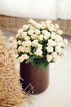 Precosa maceta de mini rosas para decorar los rincones de tu boda :) #boda #decoración