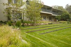 Mark Tessier Landscape Architecture - Maloney Residence