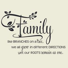 """'Family, Like Branches on a Tree."""" Two-tone Vinyl Wall Decal (Green) Family Reunion Quotes, Family Reunion Themes, Family Tree Quotes, Family History Quotes, Family Reunion Shirts, Family Sayings, Family Poems, Family Reunions, Family Reunion Decorations"""