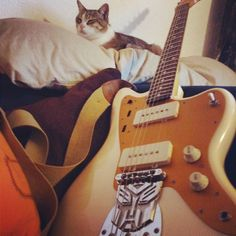 Redefining what it means to be a #JazzCat