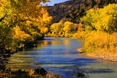 Rio Grande in the Fall