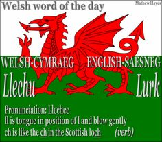 #Welsh Word of the Day: Llechu/ #Lurk - to lurk