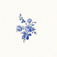 Esta Belle Rose 115717