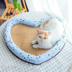 Heart Shape Summer Dog Cat Bed Pet Cool Mat Dog Cooling Mat, Puppy House, Bed Mats, Summer Dog, Cat Accessories, Pet Carriers, Girl And Dog, Service Dogs, Big Dogs
