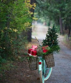 Bike at Christmas #greatpic / Bici a Natale #bellafoto