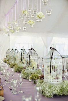 41 best love birds wedding theme images on pinterest love birds love birds theme wedding cage centerpieces with babys breath junglespirit Gallery