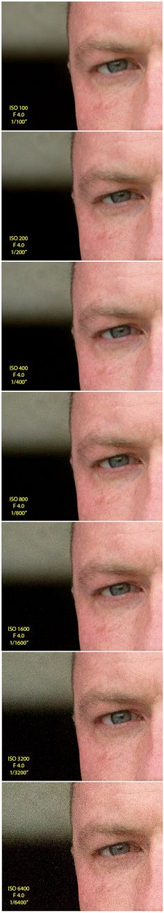 Photography 101 Tutorial: ISO Comparison | Middle Tennessee Senior Portrait Photographer