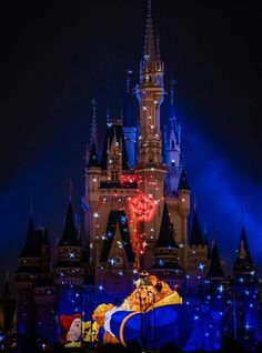 I love Disney it is the place where my family and me don't have to worry about the real world
