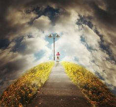The road to…     by Martin Marcisovsky