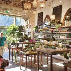 Grab your girls & join us this Sunday at our Succulent Driftwood workshop hosted by Bess Wyrick of Save your spot before… Garden Nursery, Plant Nursery, Cafe Design, Store Design, Flower Shop Interiors, Driftwood Chandelier, Flower Shop Design, Garden Shop, Garden Projects