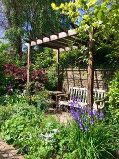 Pergolas for privacy in a long, thin urban garden