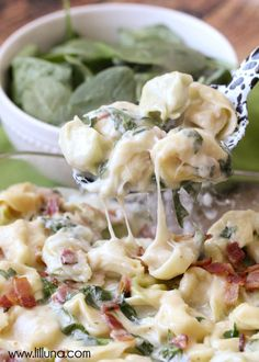 This Easy Cheesy Baked Tortellini is simple and delicious too. Tortellini, bacon, cheese, basil, & spinach fill this recipe and make it irresistible and perfect for dinner any night. Pasta Dishes, Food Dishes, Main Dishes, Pasta Recipes, Dinner Recipes, Cooking Recipes, Baked Tortellini Recipes, Homemade Tortellini, Healthy Recipes