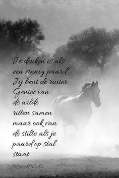 mooie paarden spreuken Mooie Zinnen Paarden | paulaclaudiakeren site mooie paarden spreuken