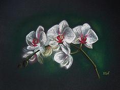 Орхидеи пастелью | Ярмарка Мастеров - ручная работа, handmade