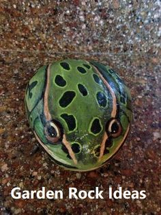 Painted frog rocks are same with another rock painting. It proves that a rock can be turning to something valuable. See many examples of this extraordinary frog painted rocks. Pebble Painting, Pebble Art, Stone Painting, Diy Painting, Painted Rock Animals, Hand Painted Rocks, Painted Stones, Painting Animals On Rocks, Turtle Painted Rocks