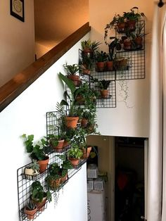 Grates for plants to hang Room With Plants, House Plants Decor, Plant Rooms, Hanging Plants, Indoor Plants, Hanging Herb Gardens, Indoor Water Garden, Hanging Succulents, Faux Plants