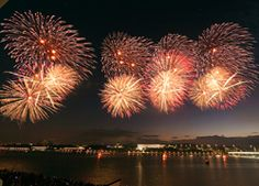 A Spectacular Finale - Australia Day fireworks by the lake | Canberra