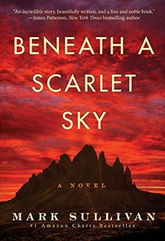 Are you looking for some new reads? Here are 15 fiction books worth reading this year: Beneath a Starlet Sky by Mark Sullivan #fiction #books #readings #bookstagram