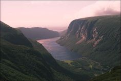 near Deer Lake, NF - a rock climbing and hiking trail Gros Morne, Trail Guide, Newfoundland And Labrador, Rock Climbing, Hiking Trails, North America, Deer, National Parks, To Go