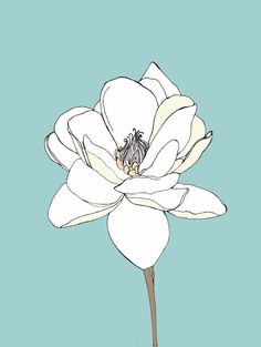 This artist - OrangeWillow on Etsy - has some very beautiful prints of flowers and animals. Simple and elegant.