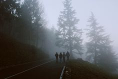 stand by me aesthetic dark academia forest Gravity Falls, Twilight, Scorpius Rose, Between Two Worlds, Stranger Things Aesthetic, The Secret History, The Marauders, The Villain, Story Inspiration