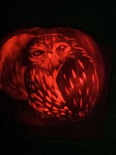 Pumpkin carving, my little owl pumpkin and some tips that I learned!