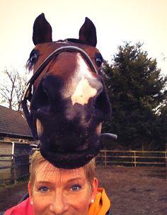 Selfie Paardenpraat