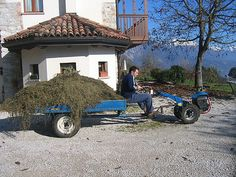 maras48 by Agriturismo Dagai, via Flickr