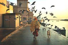 sadhu and his dog gujarat india