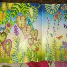 Take a peek at this great artwork on Johanna Basford's Colouring Gallery! Secret Garden Coloring Book, Coloring Book Art, Adult Coloring Book Pages, Colouring Pages, Magical Jungle Johanna Basford, Johanna Basford Coloring Book, Color Magic, Colouring Techniques, Artwork