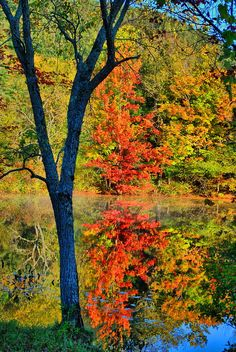 ✮ Brant Lake, Adirondacks
