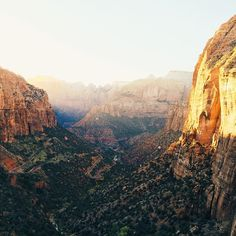 Zion National Park / photo by Connor McSheffrey
