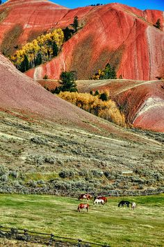 The Red Hills... Just outside Grand Teton National Park, Wyoming, United States.