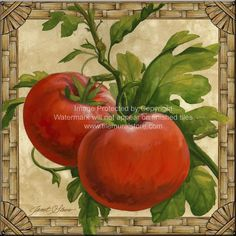 Decorative fruit art, vegetable art, kitchen art by noted painter Janet Stever, represented for licensing exclusively by Porterfield's Fine Art Licensing. Decoupage Vintage, Decoupage Paper, Posters Vintage, Vintage Images, Illustration Botanique, Tile Murals, Fruit Print, Kitchen Art, Kitchen Pics