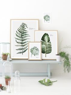 Botanical watercolor prints by Maaike Koster of My Deer Art Shop: Dutch artist Maakie Koster of My Deer Art Shop makes botanical prints of her watercolors. She specializes in stylish combinations of art and potted plants. Turbulence Deco, Interior And Exterior, Interior Design, Deer Art, Room Decor, Wall Decor, Wall Art, Deco Floral, Home And Deco