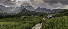 Polish Mountains, Nature, Travel, Naturaleza, Viajes, Destinations, Traveling, Trips, Nature Illustration