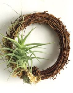 Living Wreath by EasyGrowinDesigns on Etsy