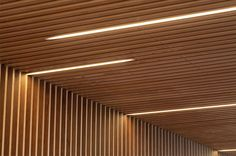Interiorisme per una oficina de Caixa dArquitectes - Alejandro Garcia, Roger Mayol, Jonatan Domènech Timber Ceiling, Open Ceiling, Wooden Ceilings, Timber Slats, Timber Cladding, Linear Lighting, Lighting Design, Ceiling Design, Wall Design