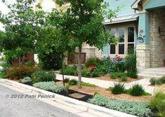 Digging » Colorful front garden instead of lawn in Mueller neighborhood