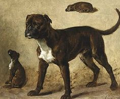 Bullenbeissers by Otto Eerelman (1839-1926)