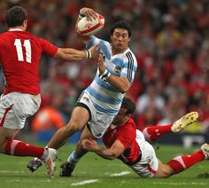 Argentina's Martin Rodriguez stretches the Wales defence