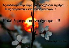 Night Quotes, Book Quotes, Greek Quotes, Good Night, Wish, In This Moment, Sayings, Movie Posters, Paracord