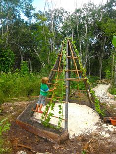 Love this: tee pee for the children to play in, but it's also home to cucumber seedlings (vines) & and a wall climbing spinach…