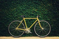 On yer bike! For a healthy body and heart | Good Magazine