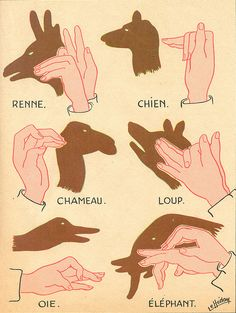 Mother should have shown you how to make shadow puppets.