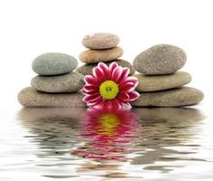 ~ Balance life