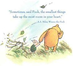 Pooh Bear