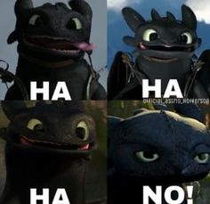 How to train your dragon memes toothless 36 Ideas Toothless And Stitch, Toothless Dragon, Hiccup And Toothless, Httyd, Toothless Funny, How To Train Dragon, How To Train Your, Dreamworks Dragons, Disney And Dreamworks