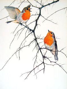 Robin Bird Tattoo Traditional